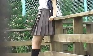 Jade Omni - O38-01 - Schoolgirls, Drop Panties Steal Skirts